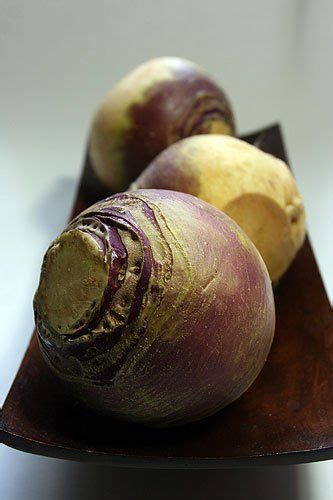 root vegetable allergy 17 best images about rutabagas on spotlight