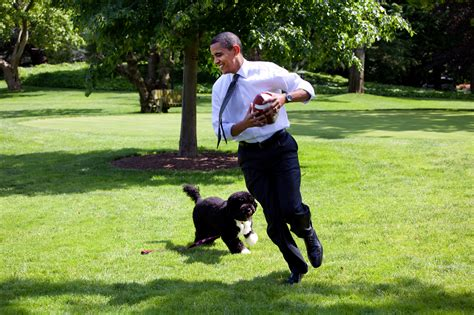 presidential dogs my exclusive on wildlife protection with president barack obama 183 a