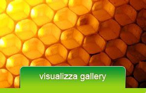 cassetta per apicoltori domenici trasformazione miele in prodotti per apicoltori
