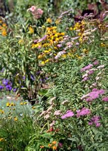 How To Make A Butterfly Garden by Garden Ballet Gardens For Goldens
