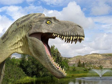 images of dinosaurs dinosaurs images animal