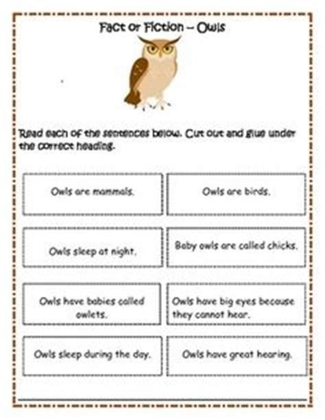 1000 images about teaching owl at home on