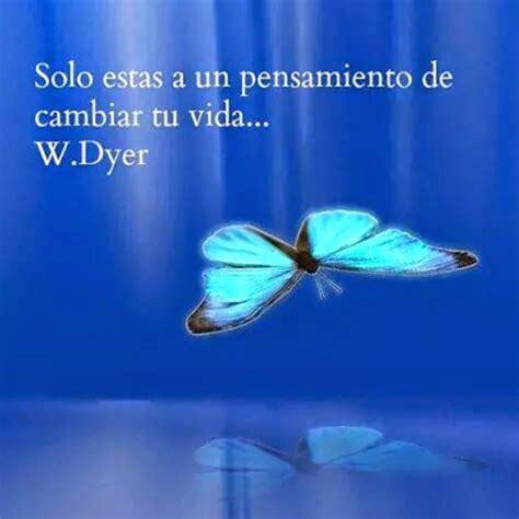 imagenes de mariposas azules con frases im 225 genes de aves con frases cortas de reflexi 243 n personal