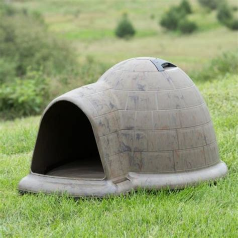 igloo dog house 12 wonderfully unusual dog houses