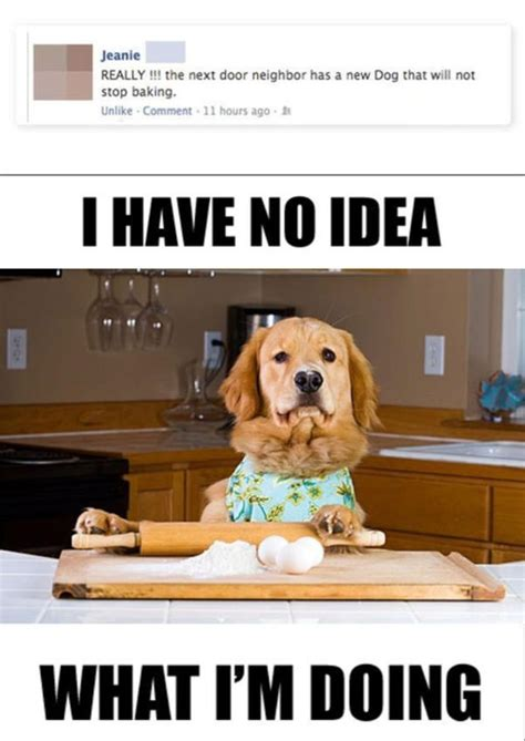 No Idea Meme - will not stop baking i have no idea what i m doing