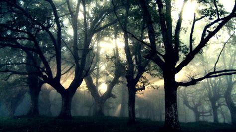 imagenes de paisajes goticos paisajes goticos tristes imagui
