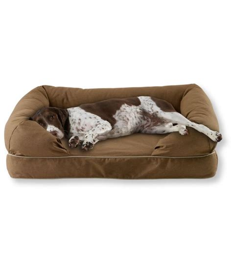 dog couch cover best 25 dog couch cover ideas on pinterest pet couch