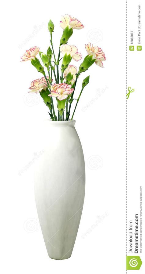 Flowers In White Vase by White Vase With Flowers Royalty Free Stock Photos Image
