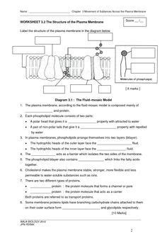 Cell Membrane Coloring Worksheet Answer Key Biology Junction by Label The Microscope Parts For Elementary School Students
