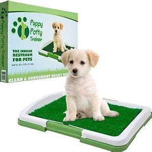 potty trained dog peeing in house indoor puppy dog pet house potty training pee pad mat tray grass toilet odorless ebay