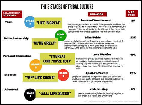 the 5 stages of tribal culture based on tribal leadership