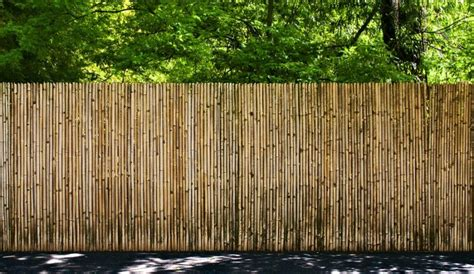 bamboo fencing and screens bamboo