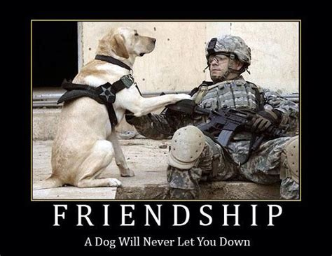 war a soldier s best friend friendship a will never let you extremely sharp swords knives