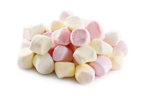 marshmallow clipart marshmallow clip 42 cliparts