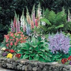 Flowers For Shade Garden Shade Perennials Gardening