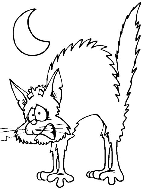 coloring pages of a black cat for halloween black cat halloween coloring pages