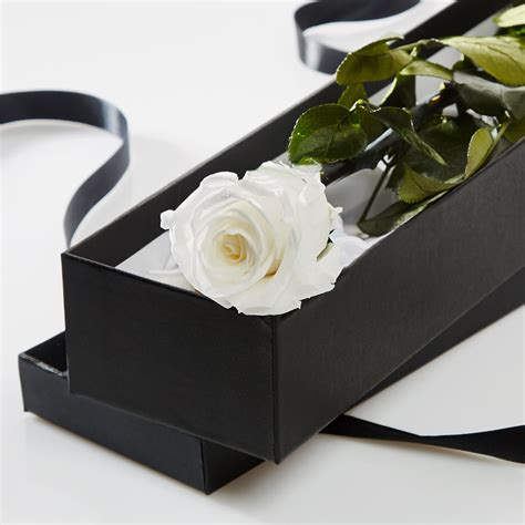 Box A Single Preserved Flower Represent And Lo T2909 1 single white in a silk lined gift box petals roses