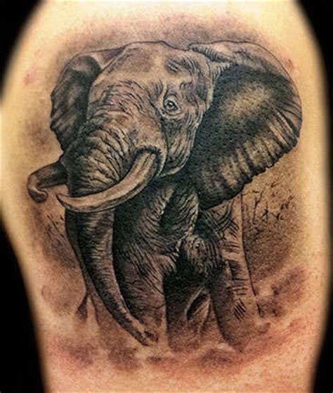 elephant tattoo grey angelgalindo elephant black and grey