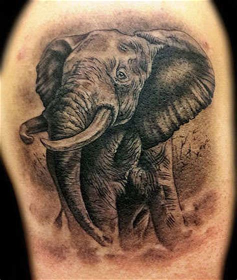elephant tattoo black and grey angelgalindo elephant black and grey