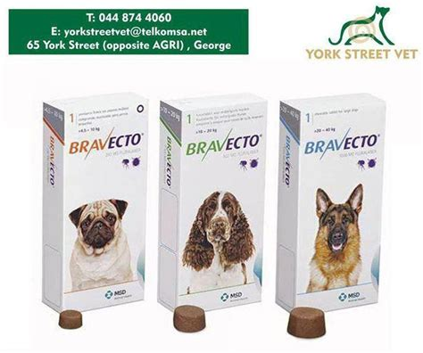flea shoo for puppies 12 weeks 110 best the vet shop images on shop pet food and diet