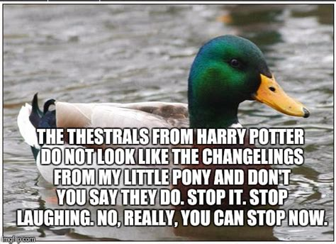 Advice Mallard Meme Generator - actual advice mallard meme imgflip