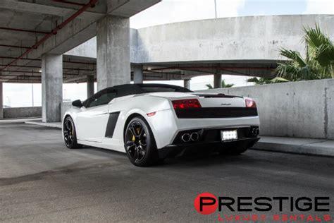 Lamborghini Orlando Rental Cars Car Rental Orlando