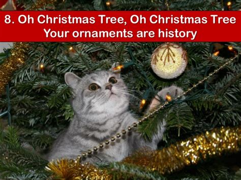 your cat s top 10 christmas songs