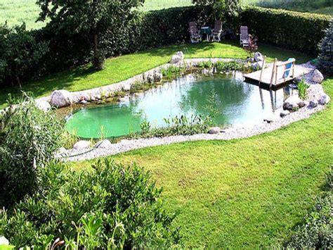 backyard swimming ponds pictures of backyard ponds backyard swimming pond homemade swimming ponds interior