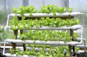 Garden Growing System Hydroponic Systems In A Greenhouse Garden Greenhouse