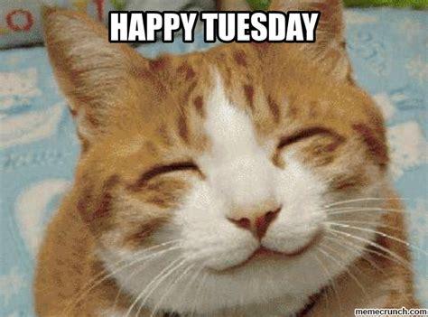 Tuesday Meme - happy tuesday