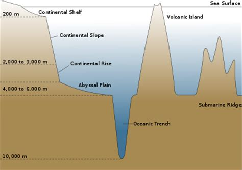 what is a sea section oceanic basin wikipedia