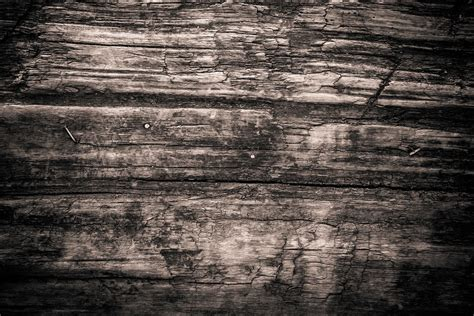 Texture Wood Monochrome · Free photo on Pixabay
