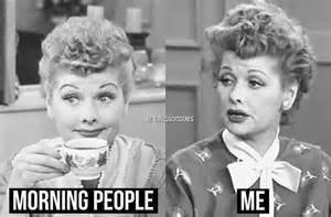 i love lucy meme 1000 images about i love lucy memes on pinterest your
