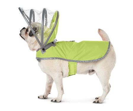 raincoats for dogs new raincoats for dogs wagging world