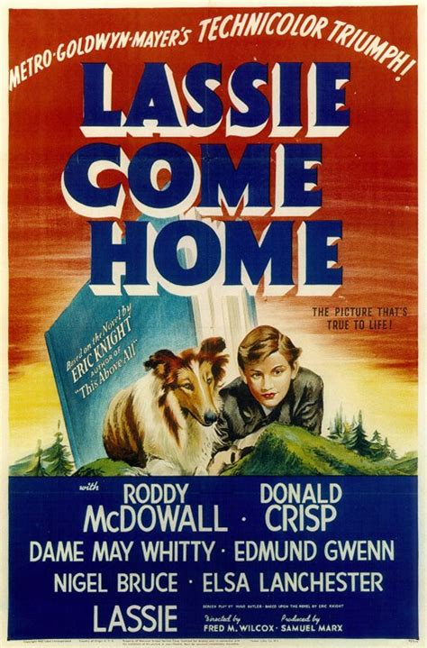 and lassie come home