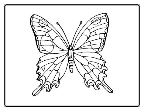 butterfly coloring pages moms