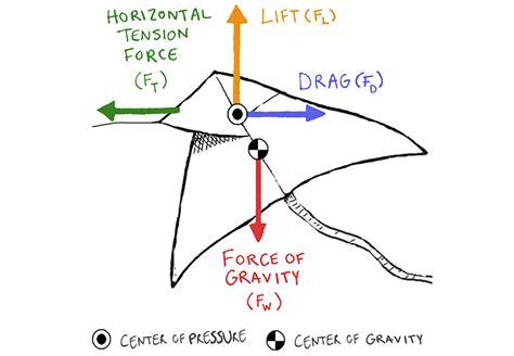 Make a Kite With Physics - Science Friday Delta Kite Diagram