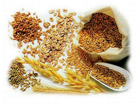 whole grains enriched grains refined grains whole grains for energy when you really need it youth1