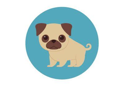 illustrator tutorial dog how to create 10 mini pug illustrations in adobe illustrator