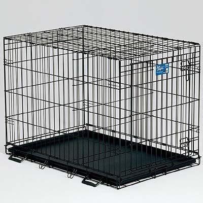 crate a puppy overnight how in crate during the day your pets essential baby