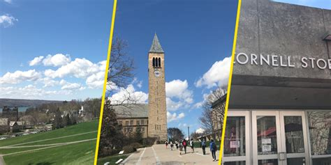 Find Cornell 6 Places You Are Guaranteed To Find Cornell Prefrosh During Cornell Days