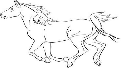coloring page mustang horse mustang horse bucking coloring pages coloring pages