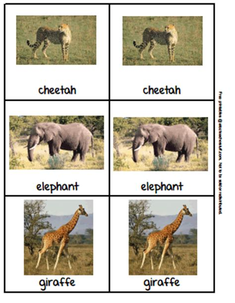 free printable zoo animal pictures zoo animal picture cards a to z teacher stuff printable