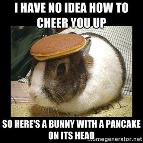 Cheer Up Meme - 25 best ideas about cheer up meme on pinterest husband