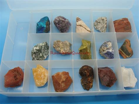 rock and mineral collection in collector s box premium