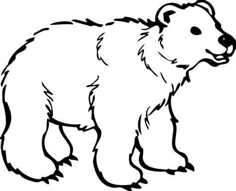 bear coloring pages for preschoolers polar bear coloring pages coloring pages to print
