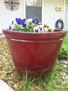 large ceramic glazed planter pots in tarrytown