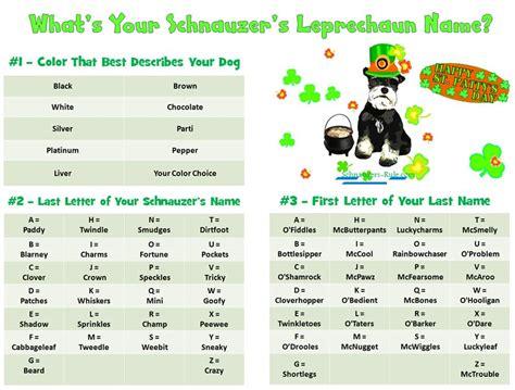 puppy name generator miniature schnauzer times