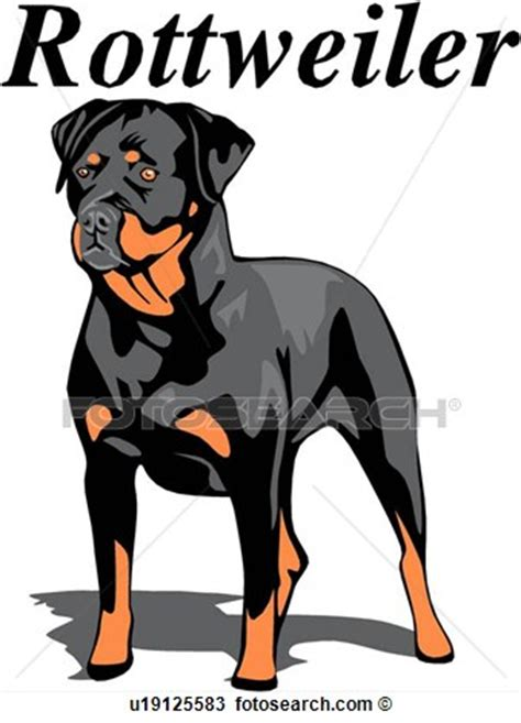 fotosearch clipart rottweiler clipart clipart suggest