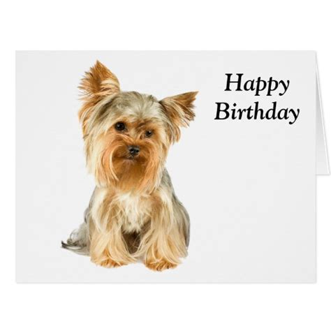 happy birthday yorkie images pin printable yorkie coloring pages image search results cake on